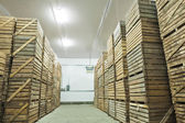 View on crates  of potato in storage house — Stock Photo