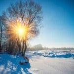 River in winter — Stock Photo #51211973