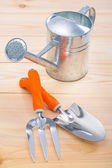 Garden tools and watering can — Stock Photo