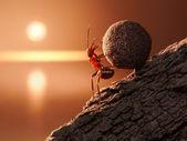 Ameise rollt sisyphos stein bergauf auf berg — Stockfoto