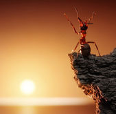Thanksgiving, ant tales — Stock Photo
