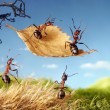 Ants flying on leaf, ant tales - Stock Photo