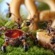 Banquet in anthill with honey and cake, ant tales - Stock Photo