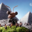 Stock Photo: Ants sphinx and pyramiding, Ant Tales