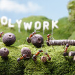 Holywork hills, teamwork, Ant Tales — Stock Photo #41073217