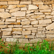 Limestone wall background — Stock Photo