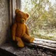 Old toy bear abandoned in the ruins. — Stock Photo