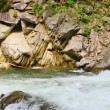 Mountain river flowing around rocks — Stock Video