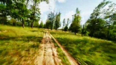 Rychlé jízdy po polní cestě lesem — Stock video
