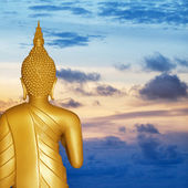 Buddha statue at sunset. Rear view. — Stock Photo