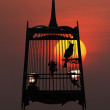 Singing bird in cage, against the setting sun - 图库照片