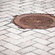 Stock Photo: Rusty manhole in the pavement