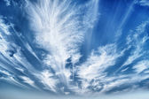 Daytime sky with stratus clouds — Stockfoto