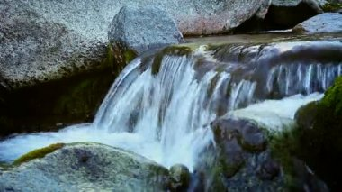 Mountain stream with clean cold water — Stock Video