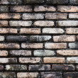 Old brick wall with mold architectural background — Photo #19845859