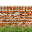 Royalty-Free Stock Photo: Red brick wall with green grass isolated on white