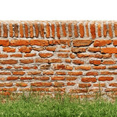 Red brick wall with green grass isolated on white — Stock Photo