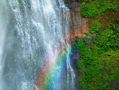 Waterfall with rainbow and green plants — Stock Photo