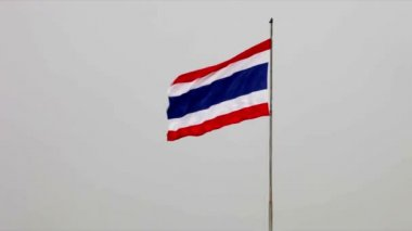The national flag of the Kingdom of Thailand waving in the wind — Stock Video