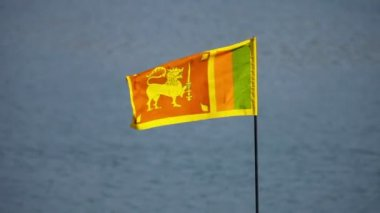 Flag of Democratic Socialist Republic of Sri Lanka — Stock Video