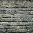 Old moldy brick wall background — Stock Photo