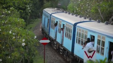 BENTOTA, SRI LANKA - May 02: Passenger train passes turn between green trees on May 02, 2013 in Bentota, Sri Lanka. Sri Lanka Railways a linking Colombo and many population tourist destinations. — Stock Video