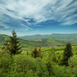 Landscape - Carpathians mountains, Ukraine — Stock Photo
