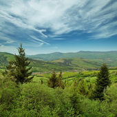 Landscape - Carpathians mountains, Ukraine — Stock Photo