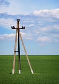 Concrete pole - power lines in the field — Stock Photo