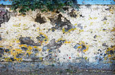 Old weathered concrete fence background — Stock Photo