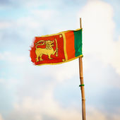Democratic Socialist Republic of Sri Lanka flag — Stock Photo