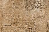 Pattern - concrete wall with cracks — Fotografia Stock