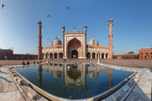 Indian landmark - Jama Masjid mosque in Delhi. Panorama — Stock Photo