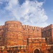 Walls of the ancient Red Fort in Agra, India — Stock Photo