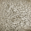 Cracked earth in dry season — Stock Photo
