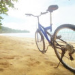 Video 1920x1080 - Modern bicycle on a tropical the beach without people — Stock Video
