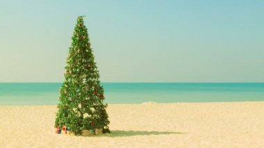 Video 1920x1080 - Christmas tree on a tropical beach — Stock Video