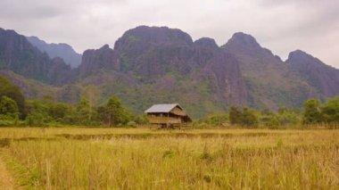 Видео 1920 x 1080 - Лаос. пустой рисовое поле с соломой на фоне гор — Стоковое видео