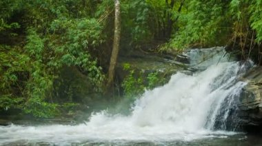 Video 1080p - Small forest waterfall in Thailand — Stockvideo