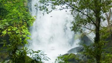 Video 1080p - Water falls down from a great height. Forest waterfall in Thailand — Wideo stockowe