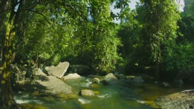 Video 1080p - Small rapids river in the forests of Cambodia — Stock Video