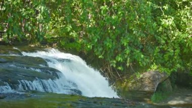 Video 1080p - River breaks down from the ledge - forest waterfall — Stock Video