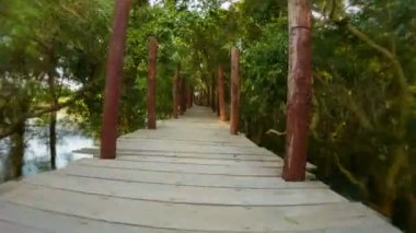 Video 1080p - Dangerous running on a high bridge over the lake and forest. Cambodia — Stock Video