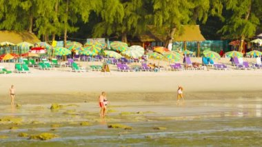 PHUKET, THAILAND - 05 OCT 2013: Tourists walk on a Kamala beach on low tide time with beach umbrellas shairs and beds on background — Stock Video