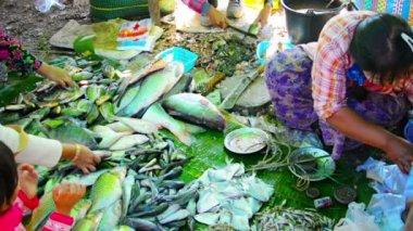 BAGAN, MYANMAR - CIRCA JAN 2014: Fishmonger in the open market — Stock Video