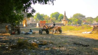 BAGAN, MYANMAR - 11 JAN 2014: The territory on which usually occurs fair — Stock Video