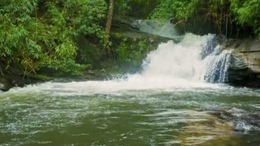 Video 1080p - Small river with waterfall in the forest. Chiang Mai, Thailand — Stockvideo