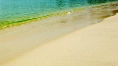 Video 1080p - Calm tropical sea and a sandy beach — Stock Video