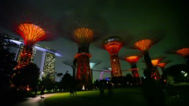 SINGAPORE - CIRCA DEC 2013: Gardens by the Bay at hight. Supertrees are tree-like structures dominated landscape — Stock Video