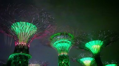 SINGAPORE - CIRCA DEC 2013: Gardens by the Bay at hight. Light show. High level of digital noise in the video — Stock Video